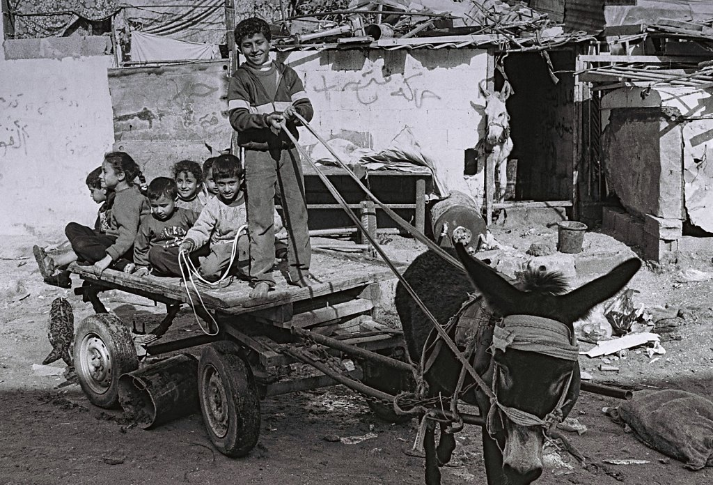 Kinder in Gaza (Portrait, Reportage, on location, redaktionell)